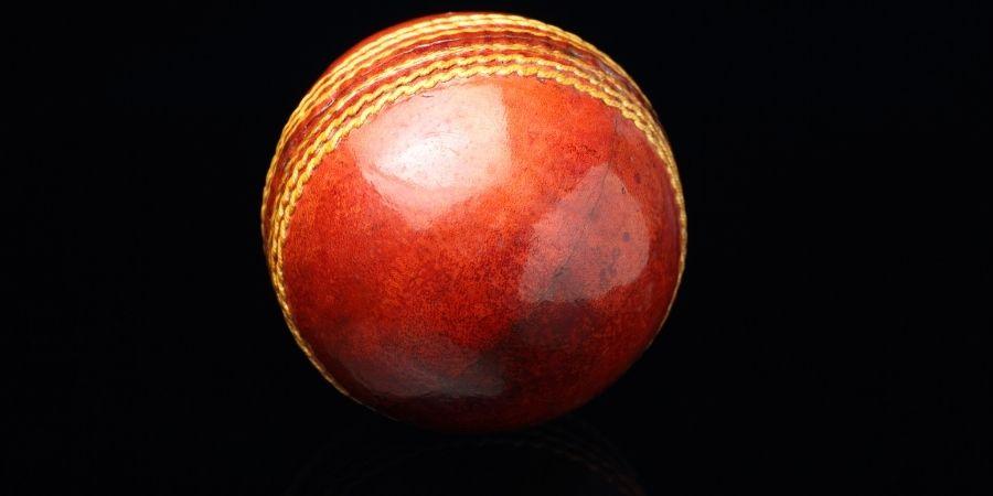 Pelota de cricket de lignum vitae. Deporte de lujo con una madera de alto valor