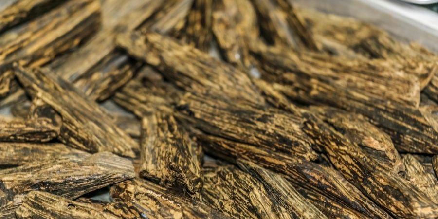 Pequeños trozos de la madera de Agar