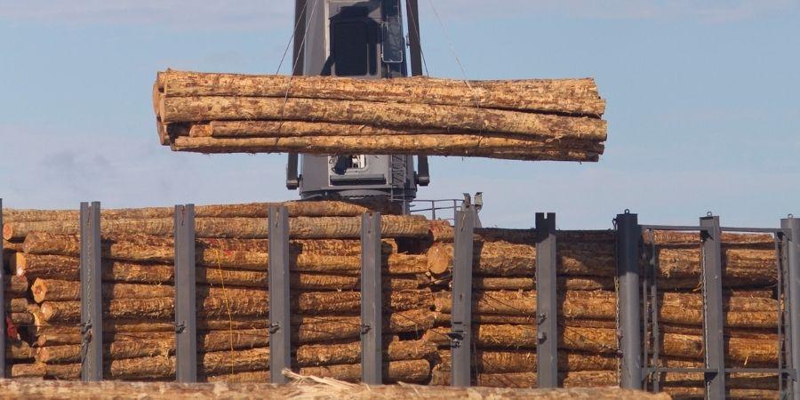 New Zealand Wood para la exportación