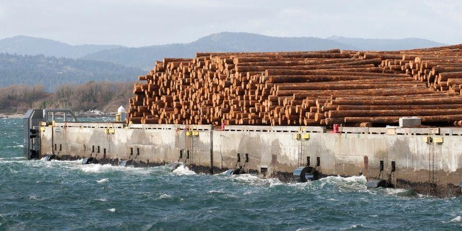 madera en Puerto en New Zealand Wood
